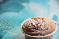 A cupcake with candied fruit Stock Images