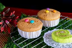 2 Cupcake with Candy on Top and Cake Roll royalty free stock image