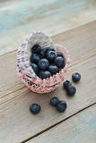 Cupcake cases with blueberry Stock Images
