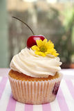 Cupcake with Cherries and Flower Stock Photo