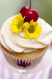 Cupcake with Cherries and Flower Stock Photography