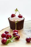 Cupcake with cherries Stock Image
