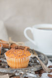 Cupcake with chocolate chips. Cupcake with chocolate shavings and white coffee cup surrounded by coffee beans and a variety of spices with space for text Stock Photography