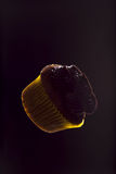 Cupcake. Chocolate cupcake floating in space Royalty Free Stock Photo