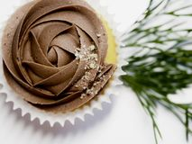 Cupcake With Chocolate Icing royalty free stock photography