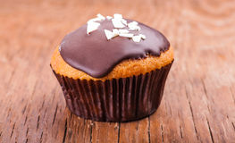 Cupcake in chocolate icing Royalty Free Stock Image