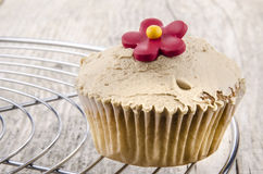 Cupcake with cocoa butter cream Stock Image