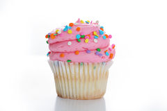 Cupcake with colorful sprinkles Stock Images