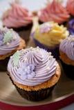 Cupcake stock images