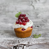 Cupcake with cream and red currants Stock Photos