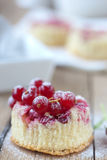 Cupcake with currants. Delicious small cupcake with red currants Stock Photos
