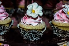 Cupcake. Cute cupcake shop by my house Royalty Free Stock Photos