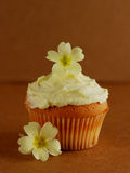 Cupcake decorated with fresh primrose flowers. Small cake with two wild primroses on brown background Royalty Free Stock Images