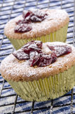 Cupcake with dried cranberries and powdered sugar on a cooling r Stock Photo