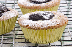 Cupcake with dried organic prune Stock Photo
