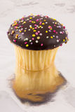 Cupcake on foil Royalty Free Stock Image