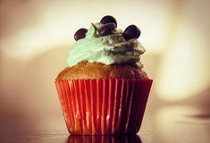 The Cupcake Royalty Free Stock Photos
