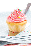 Cupcake with frosting and sprinkles Royalty Free Stock Photography