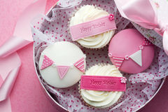 Cupcake gift box Royalty Free Stock Image