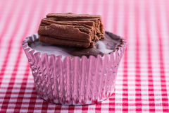 Cupcake on gingham table cloth Royalty Free Stock Images