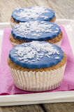 Cupcake with  grated coconut flakes Royalty Free Stock Photos