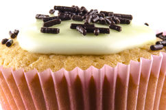Cupcake with green icing and chocolate sprinkles Stock Photo
