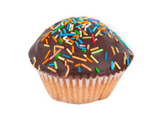 Cupcake isolated Royalty Free Stock Images