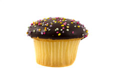 Cupcake isolated Stock Photography
