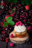 Cupcake and a lot of berries on dark wooden background. Stock Images
