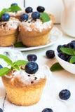 Cupcake met bosbessen Stock Fotografie