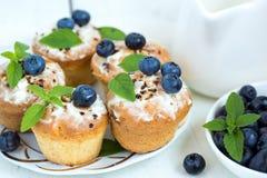 Cupcake met bosbessen Royalty-vrije Stock Foto