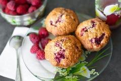 Cupcake met framboos en graangewas Royalty-vrije Stock Afbeeldingen