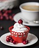 Cupcake met room en Amerikaanse veenbessen Stock Foto