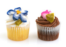 Cupcake Minis Royalty Free Stock Photos
