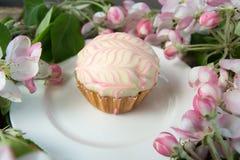 Cupcake of muffin met de verse takken van de de lentebloesem Stock Afbeelding