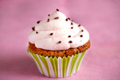 Cupcake, a muffin with pink cream icing and chocolate Royalty Free Stock Photography