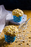 Cupcake with oats and nuts Stock Photos