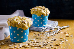 Cupcake with oats and nuts Stock Images
