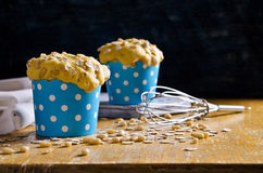 Cupcake with oats and nuts Royalty Free Stock Photo