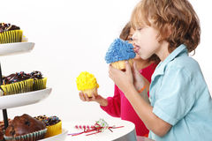 Cupcake party Stock Photography
