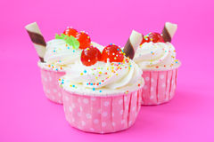Cupcake on pink background. Stock Images