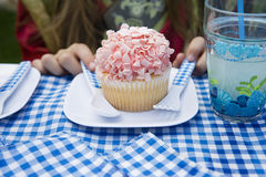 Cupcake On Plate Royalty Free Stock Image