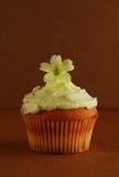 Cupcake with primrose flower on top. Small cake with fresh primrose on top on dark brown background Stock Photos