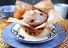 Cupcake with raisins and powdered sugar Royalty Free Stock Photo