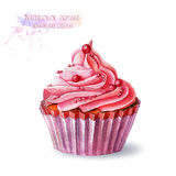 Cupcake with  raspberry cream. Royalty Free Stock Photography