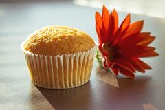 Cupcake and red flower on the table. Delicious cupcake and red flower on the wooden table, close-up view. Nice concept for greeting card Royalty Free Stock Photography