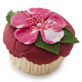 Cupcake in red, pink and green Royalty Free Stock Image