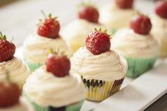 Cupcake rows Stock Image