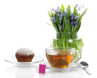 Cupcake on saucer, tea, sugar and flowers Royalty Free Stock Image