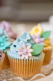 Cupcake selection in pastel colors Royalty Free Stock Image